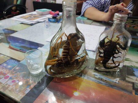 cobra and scorpion spirit